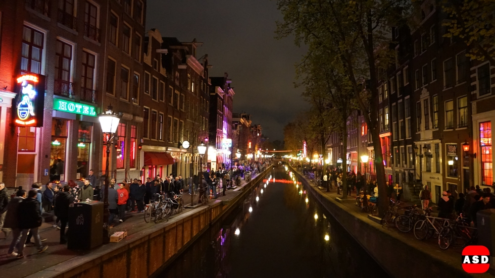 RLD-2017 Amsterdam
